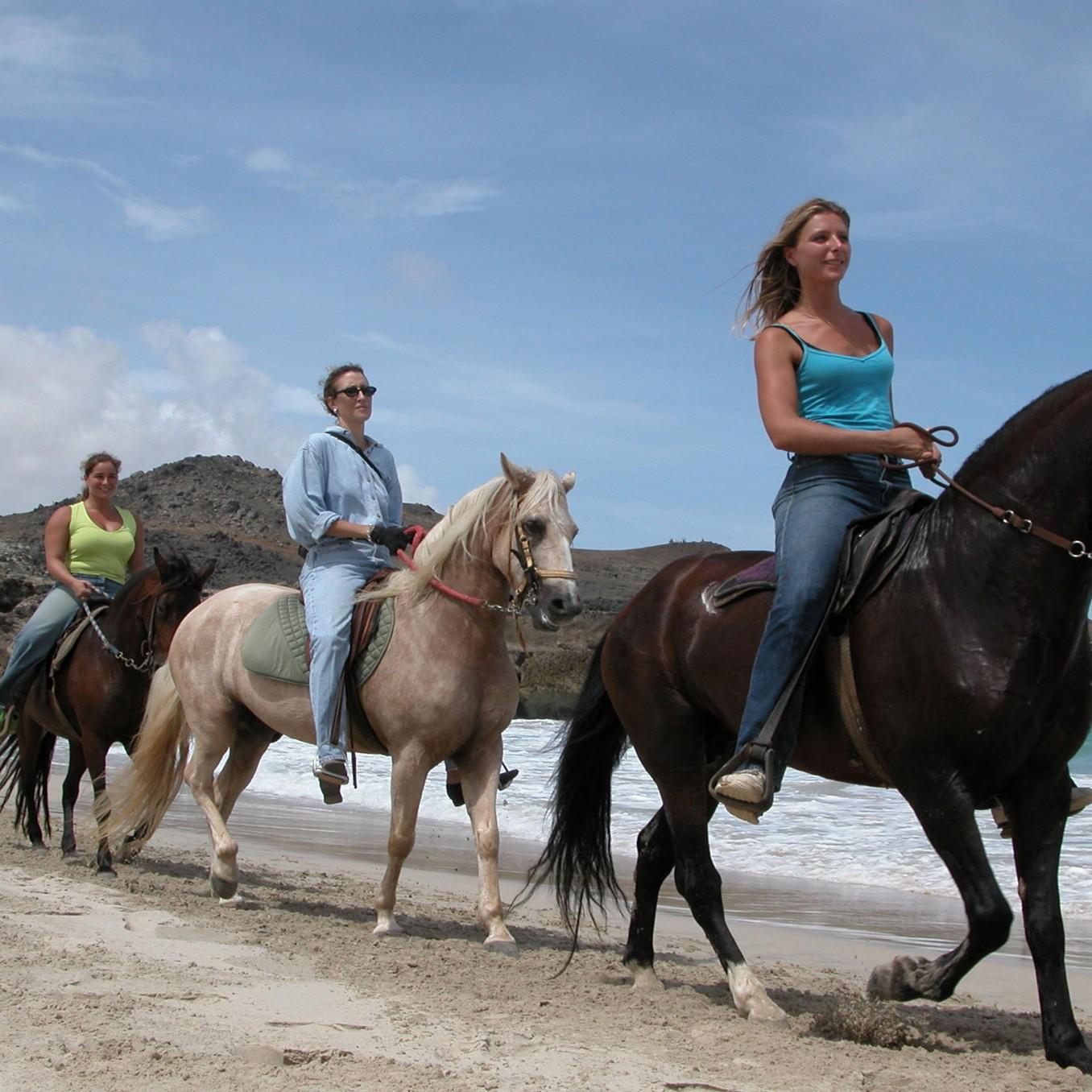 beach ride activity
