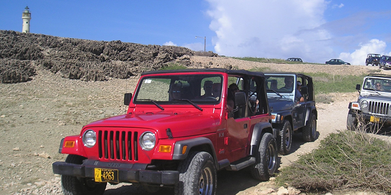 tours island tour activity