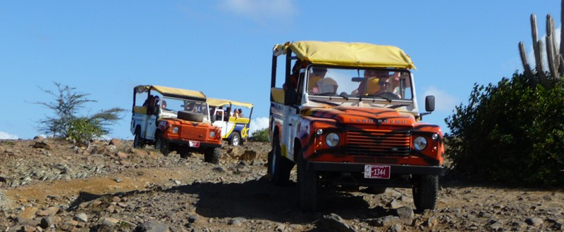 Aruba safari tours activity