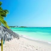 Aruba Eco DMS