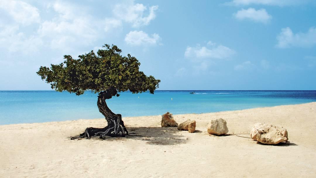 incentive travel aruba